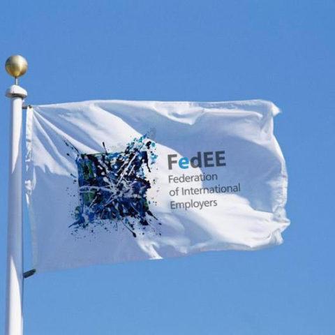 FedEE Flag Pic